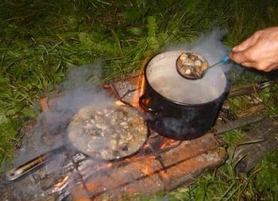 Посуда в походе за грибами